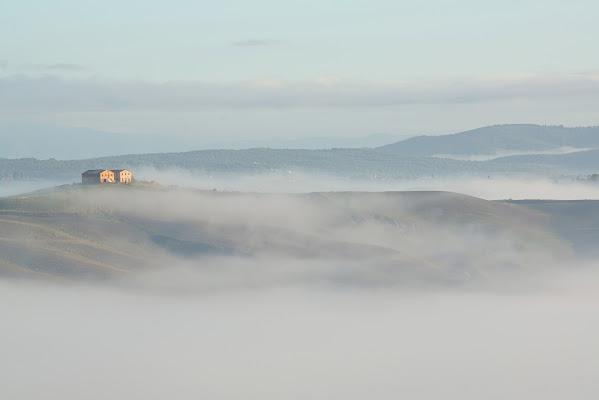 Nebbia mattutina di cicciobello