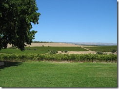 Coriol Winery's View 3