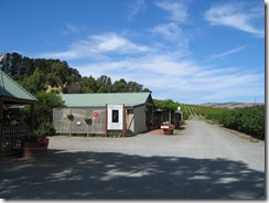 Hoffmann's Winery 1
