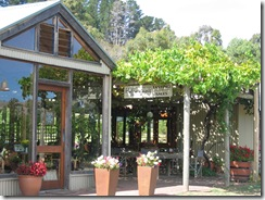 Hoffmann's Winery 4