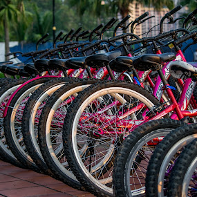 Bicycles 3 by Loh Jiann - Transportation Bicycles ( titiwangsa, vehicle, back, transportation, bicycle,  )