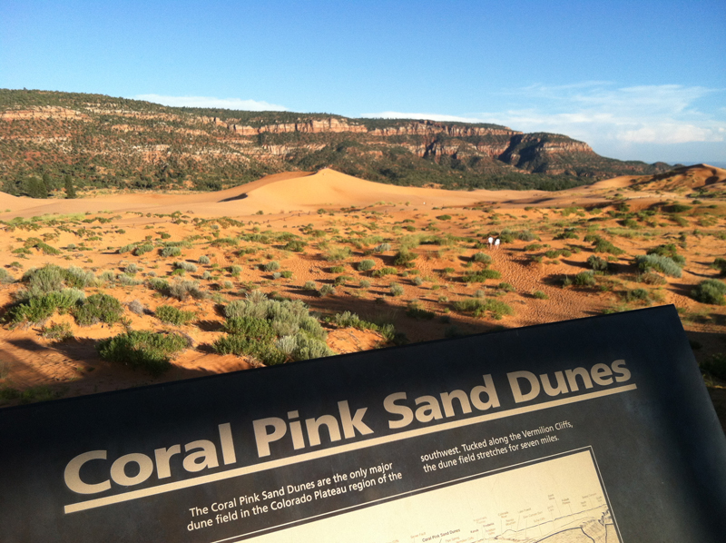 Photo: On my way to Monument Valley I stopped at the Coral Pink Sand Dunes State Park.