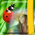Ladybug Photo Frames icon
