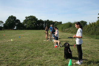 Photo: DogBasics Fun Day 2013 - waiting for the start of the Spoon Race Slalom.