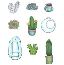 Nicole Tamarin Cling Mount Stamp Set - Succulents UTGÅENDE
