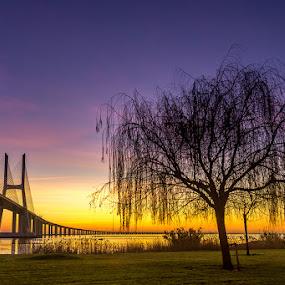 A sunrise hot by Paulo Mendonça - Landscapes Sunsets & Sunrises