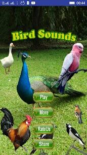 Bird Sounds 1.15 Mod + Data Download 1