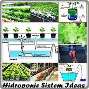 Hidroponic Sistem Ideas icon