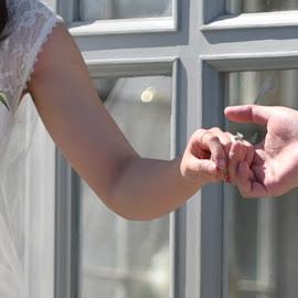 Wedding Day  by Lorraine D.  Heaney - Wedding Details