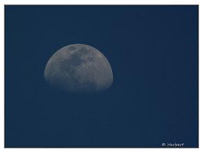Photo: Mondaufgang in Ägypten 06.04.2010