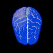 Logical test – IQ MOD + APK