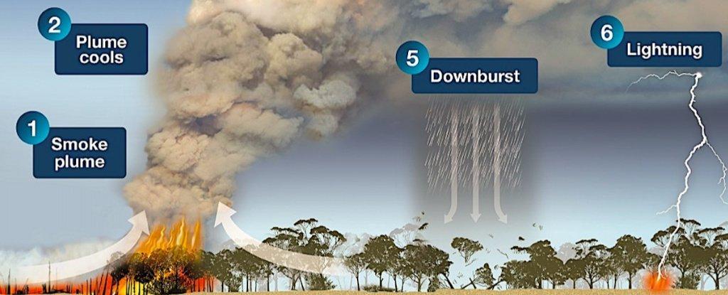 Australia firestorm