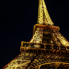 Paris Nights by Tracy Riedel-Dorsch - Buildings & Architecture Public & Historical ( paris, eiffel tower, night;, france,  )