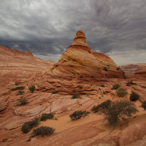 North Coyote Buttes by Stephen Berry - Landscapes Deserts