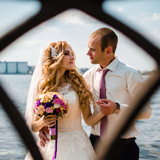 Wedding photographer Anna Sheina (Sheina). Photo of 14.07.2016