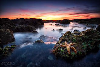"""Photo: """"Fallen Star"""" 