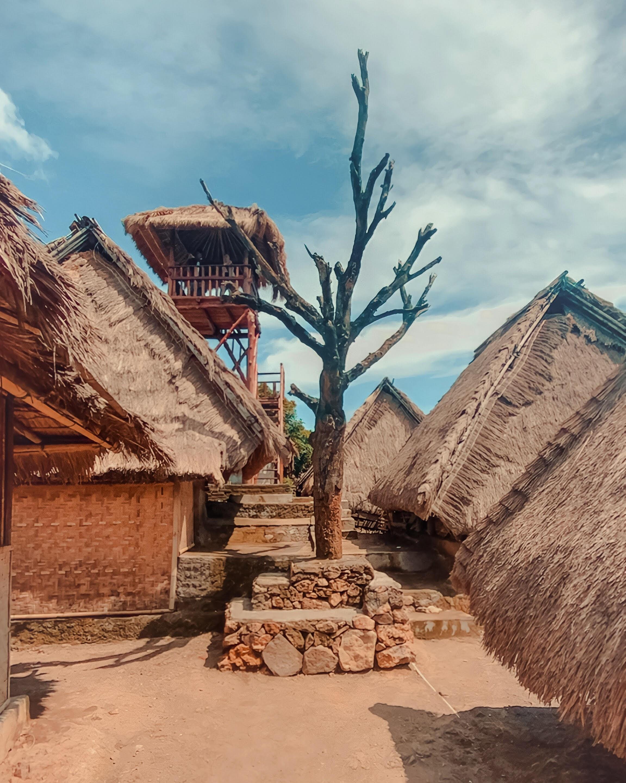 Pohon Cinta Desa Sade, Lombok