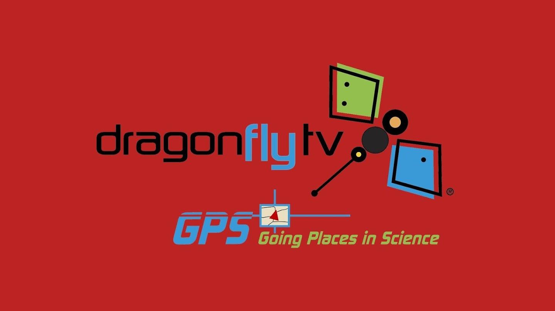 DragonFlyTV