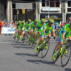 by Felice Bellini - Sports & Fitness Cycling ( giro d'italia, orange, ccc pro team, contador tinkoff-saxo, 2015, pro cycling team tinkoff saxo, sport, italy tour, team, win, out there choir, race, number one, spain, contador, kolarze, cccsport, leader, holland, polkowice, furious, germany, ccc, top,  )