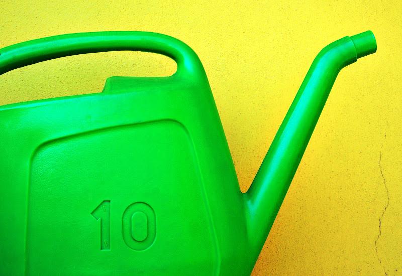 10 litri di gaspare_aita