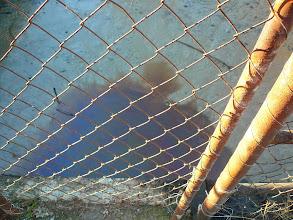 Photo: 12.1.2014 - Betonová záchytná nádrž, kde měla tekutina původně vtékat a měla být pravidelně vyvážena - není zde žádný kontrolní nebo jistící mechanismus , který by jistil jímku proti přetečení např. při vydatném dešti nebo náhlém vyprázdnění některé z lagun na skládce. — Dekontaminační plocha Rokytí.