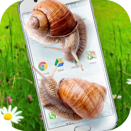 Snail in Phone best joke