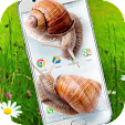 Snail in Ph.. file APK for Gaming PC/PS3/PS4 Smart TV