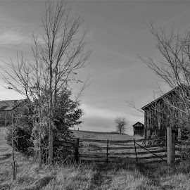 Day on the farm by Jim Dawson - Black & White Landscapes ( farm. clouds. gate. cold. winter. barn. work. kentucky. )
