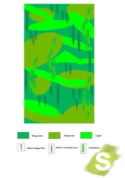 diseño del jardín de planta conservada