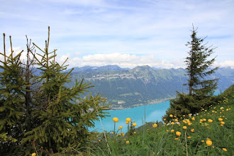 Photo: Down there the Brienzersee