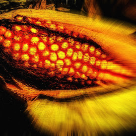Corn On The Wall. by Dave Walters - Digital Art Abstract ( nature, corn, digital ar, colors, food,  )