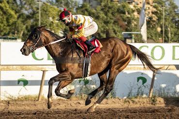Aguila Uno (Don Cavallo) se adjudicó Handicap (1200m-Arena-CHS).
