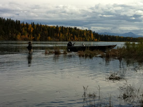 Photo: Beautiful fall afternoon on the middle Kenai river.