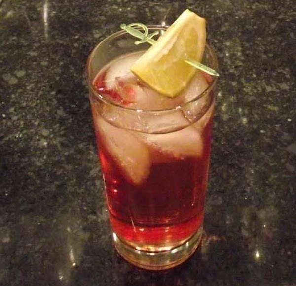Cranberry Gin And Tonic Recipe