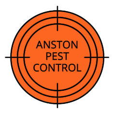 anston pest control seasonal pests