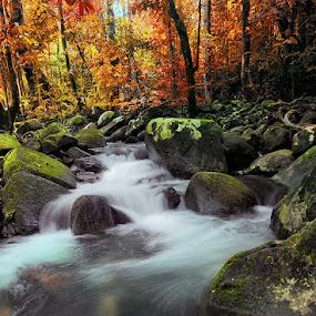 by Eko Sumartopo - Landscapes Waterscapes