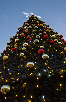 Christmas tree in the evening di stefano_angeli