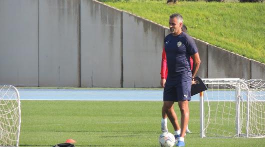 José Gomes tiene un plan