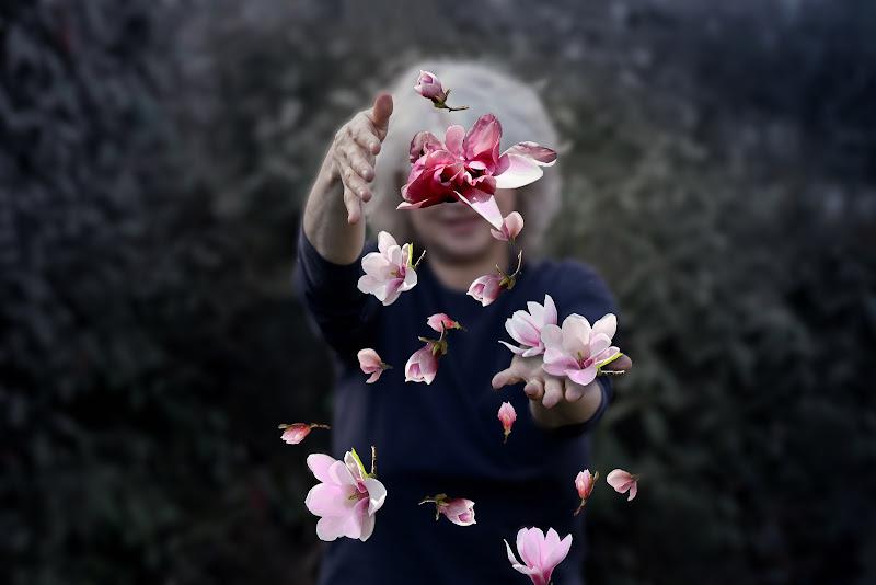 Magnolie di marzo di natalia_bondarenko
