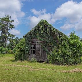 Abandoned in Georgia by Joe Machuta - Buildings & Architecture Decaying & Abandoned ( cordele ga, veterans state park )