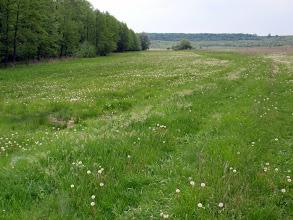 Photo: Полное бездорожье сопровождало меня до самой Полтавы...с преодолением болот вброд...