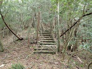 階段をひたすら登る