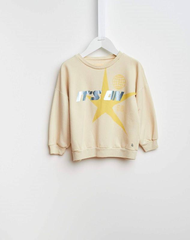 Sweater Vaida 81 Swan