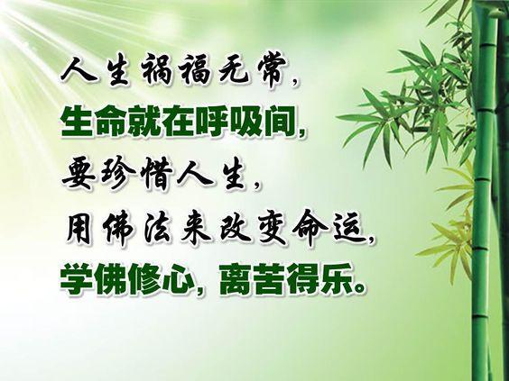 https://i.pinimg.com/564x/b8/71/9b/b8719bfdc949a474494faf085a7e26c2.jpg