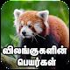 விலங்குகள் பெயர்கள் Animals Names English to Tamil APK