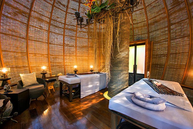 coqoon-nest-inside-angle