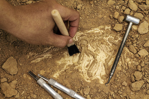 Story in stone: From the discovery of ancient fossils to the documentation of human societies of just a few hundred years ago, stone has a story to tell us. Picture: ISTOCK