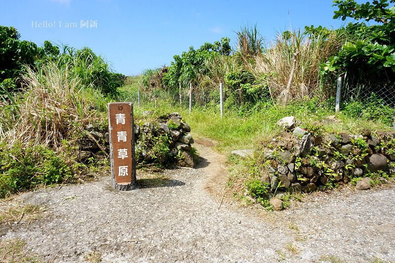 蘭嶼青青草原-1