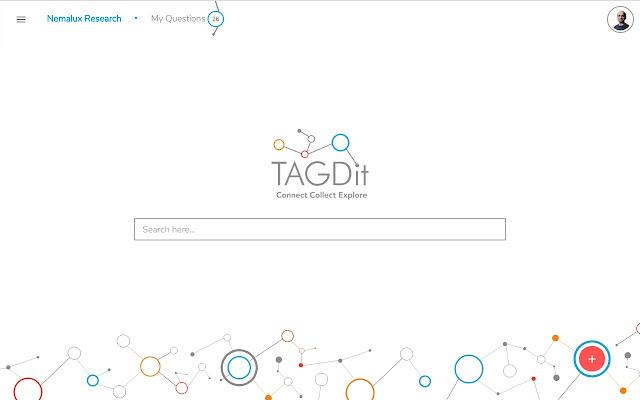 Tagdit
