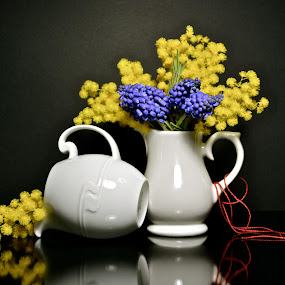 by Anisja Rossi-Ungaro - Artistic Objects Still Life ( mug, red, blue )